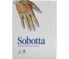 Sobotta - Atlas de Anatomia Humana - Loja Saraiva