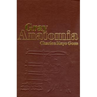 Gray Anatomia - 29ª Ed.