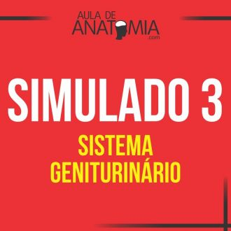 Simulado 3 - Sistema Geniturinario