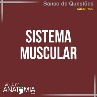 Sistema Muscular - Questões Objetivas